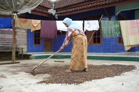 Farm to cup: Indonesia's ALKO brews plans to export blockchain coffee to China