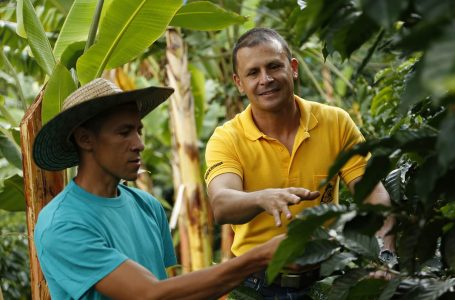 Improving the Lives of Small Farmers in Colombia