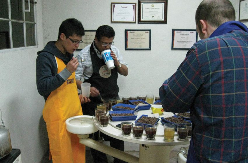 The De Leon's cupping lab