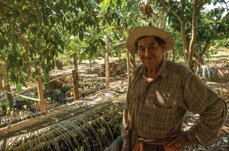 Country Traders supports local coffee farmers, goes internationally