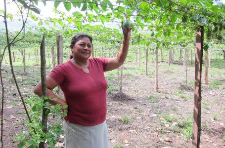 Juana, Cesar, and Hope