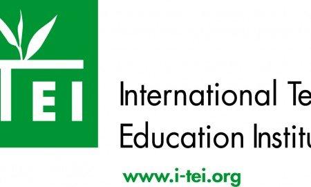 I TEI Logo Final