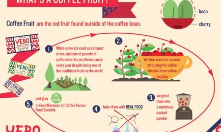 cherry infographicNEW APPLE 72dpi 01