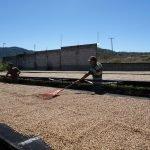 James Kosalos DSC01054 150x150 - Producer Profile: Reserva Lavado, GTN2702