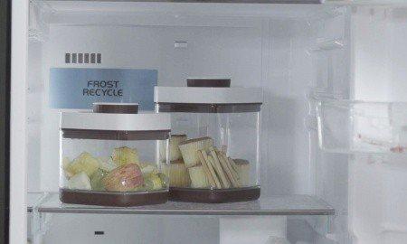 Karen Thomas - Ankomn Savior - in refrigerator
