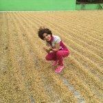 LUZ MARINA Stewart IMG 2740 150x150 - Producer Profile: Santa Elena Miel