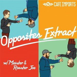 Just Meister - Opposites_Extract_Album_artwork