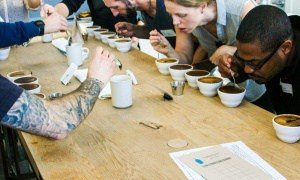 Shannon Gomes - fci_coffee_bluebottle_cupping_small (003)