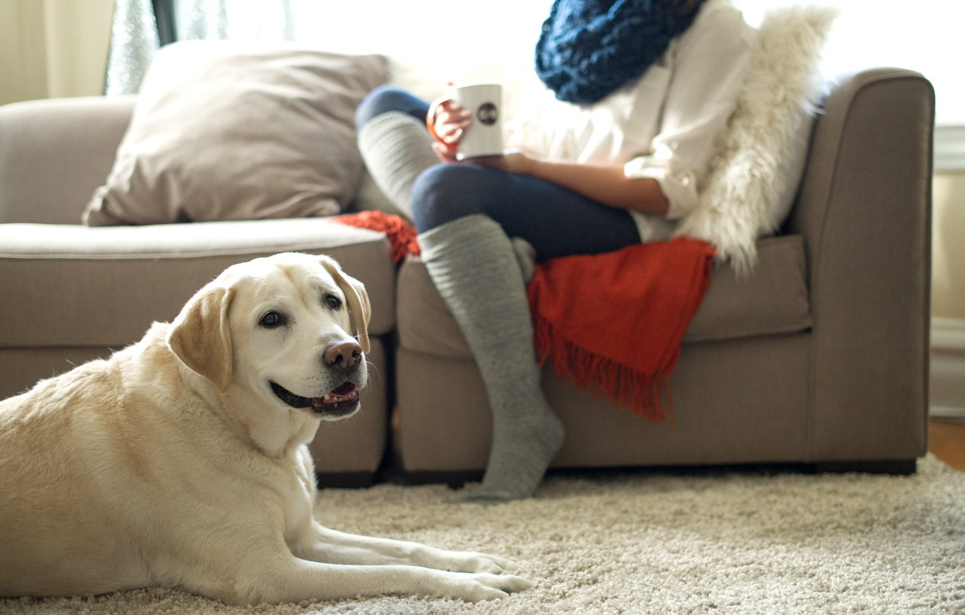 Meghan Gumer Lab and Girl on Couch with Coffee 2 - Celebrate A Man's Best Friend On National Dog Day With A Cup of Coffee