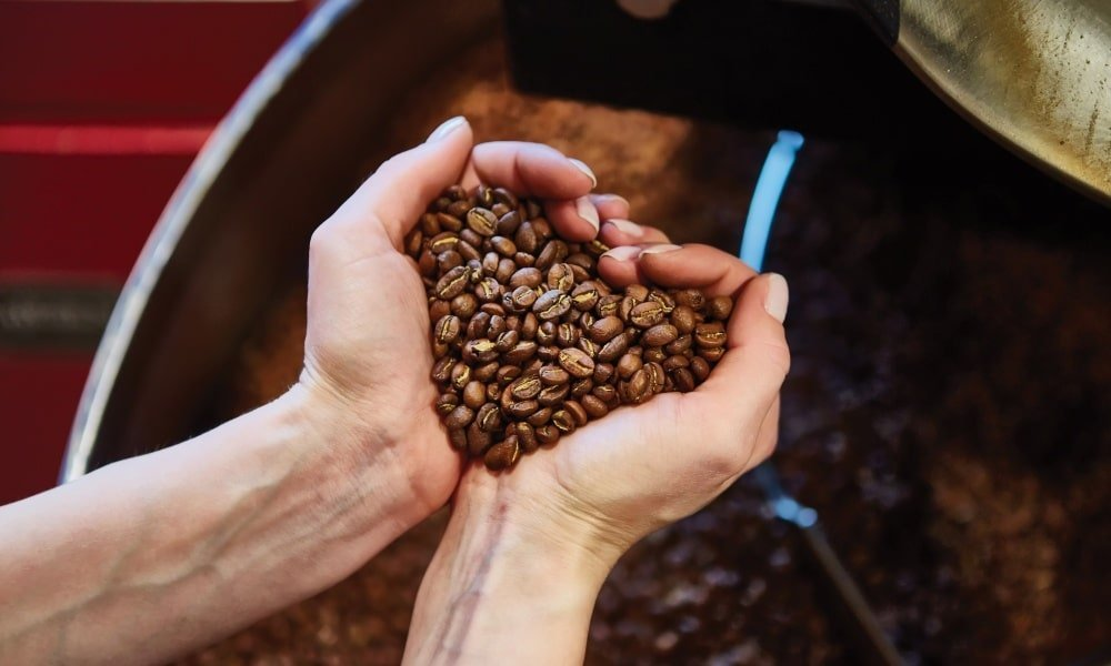 coffee roaster beans and hands 1000x600 - Roasters Rock - Roasters Guild Retreat: Then and Now