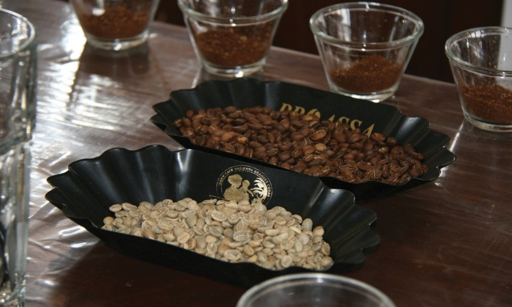 cupping 1000x600 - Third Wave Producers