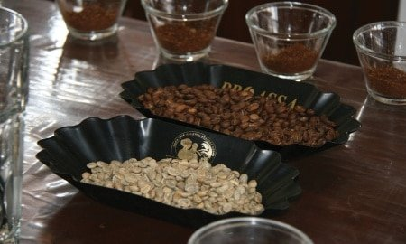 cupping 450x270 - Third Wave Producers