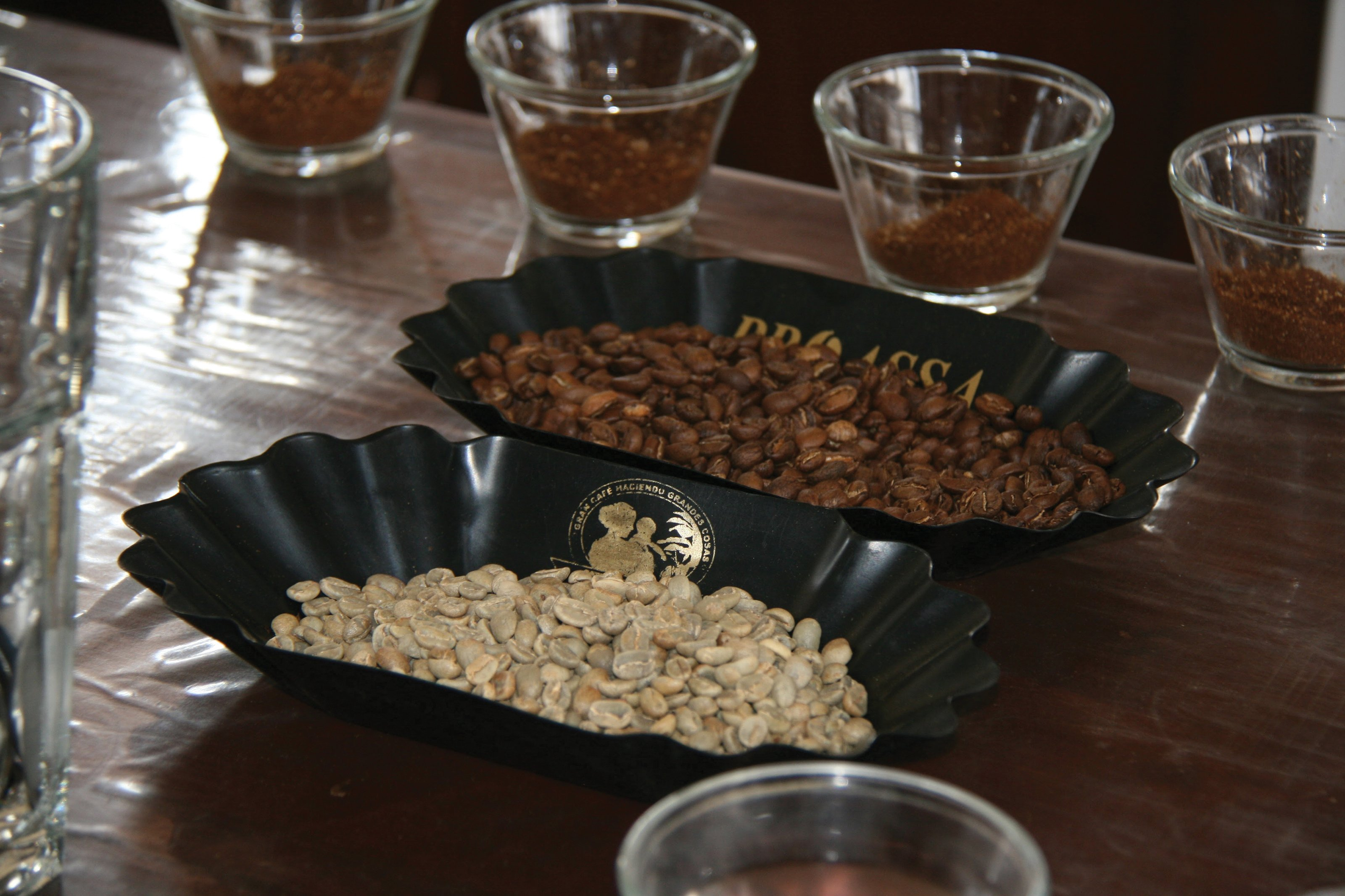 cupping - Third Wave Producers