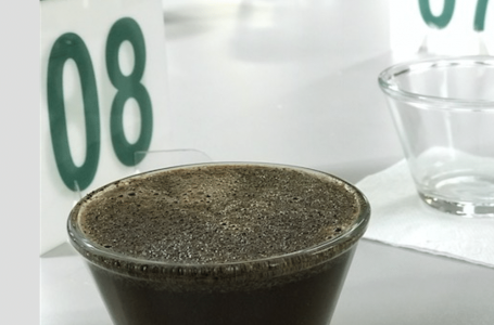 Brazil Farmer Brings in Record Price at Pulped Naturals Cup of Excellence® Auction
