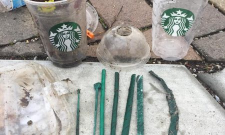 Screen Shot 2018 03 22 at 11.32.18 AM 450x270 - Former barista confronts Starbucks CEO at annual meeting over plastic pollution