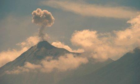 20180603 Cafetales afectados Ceniza Erupción Volcán de Fuego 2 450x270 - Fuego volcano eruption causes losses of about 0.9% to national coffee production