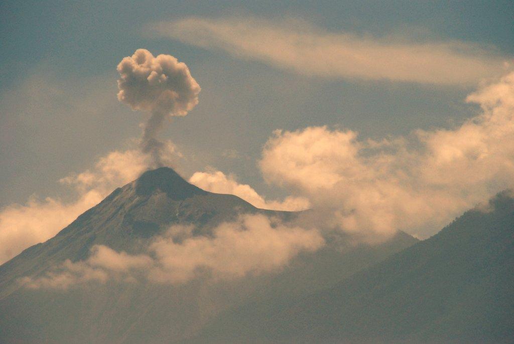 20180603 Cafetales afectados Ceniza Erupción Volcán de Fuego 2 - Fuego volcano eruption causes losses of about 0.9% to national coffee production