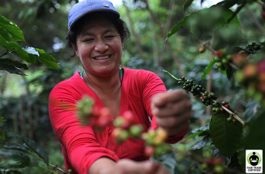 Venezuelan Migrants Providing Crucial Labor in South America