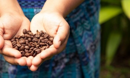 Screen Shot 2018 09 28 at 8.50.04 AM 450x270 - Celebrating Women in Coffee this International Coffee Day
