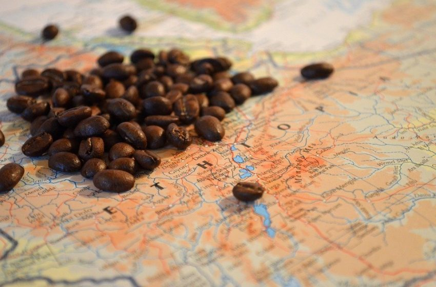 Heart Of Dark Roast: Journeying Deep Into Panama To Try A $1,000 Coffee Bean