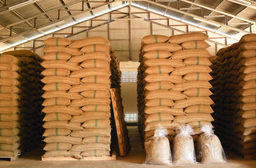 Brazil breaks record for coffee exports