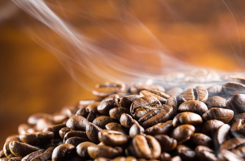 Cafe Steam Co-Owner Visits Africa To See His Coffee At The Source