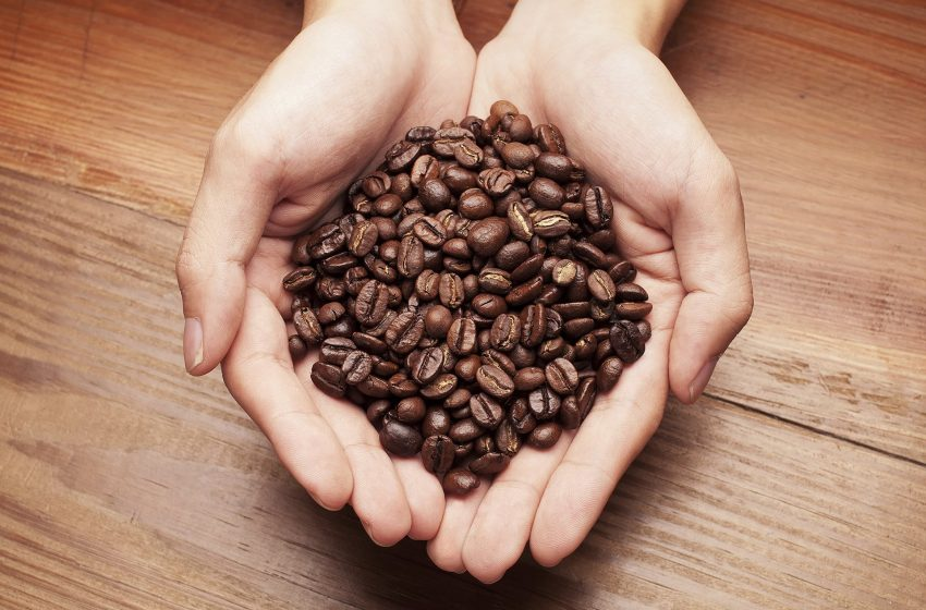 Kaladi Brothers Coffee Helps Charities Start The New Year