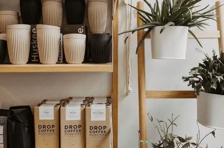 Norwalk eco-friendly store looks to expand with coffee shop