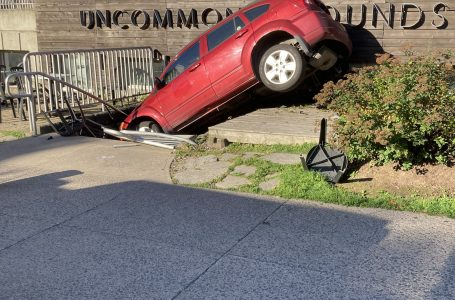 Car crashes into downtown Halifax coffee shop